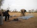 2012-Niger-villaggiopdf-19