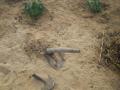 2012-Niger-villaggiopdf-34