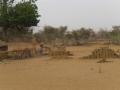 2012-Niger-villaggiopdf-44