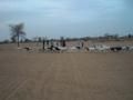 2012-Niger-villaggiopdf-72
