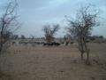 2012-Niger-villaggiopdf-73
