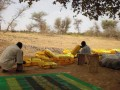 Niger-2012-14