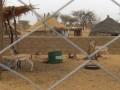 Niger-2012-5