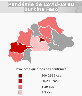 Pandémie de Covid-19 au Burkina Faso 20 juillet